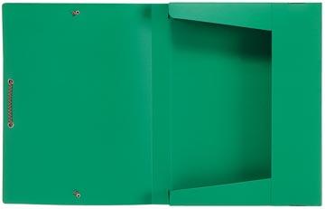 Viquel boîte de classement vert